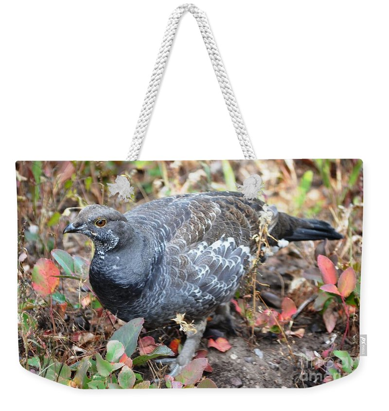 Grouse Weekender Tote Bag featuring the photograph Grouse by Deanna Cagle
