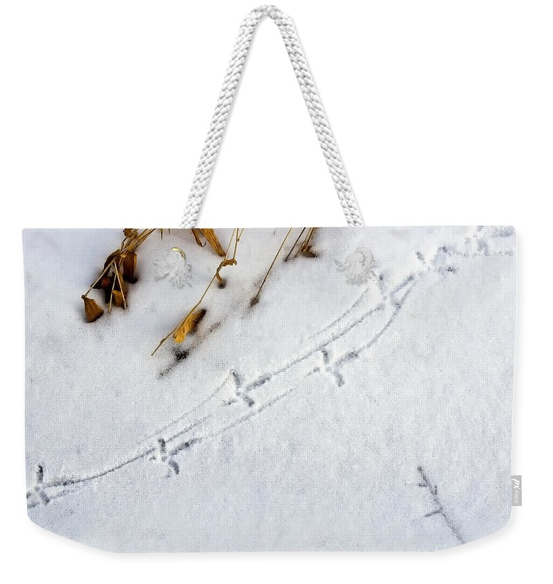 Grouse Weekender Tote Bag featuring the photograph Grouse Tracks by Timothy Flanigan