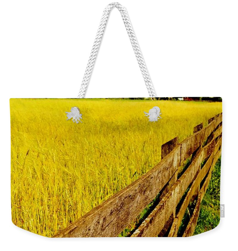 Weekender Tote Bag featuring the photograph Growing History by Daniel Thompson