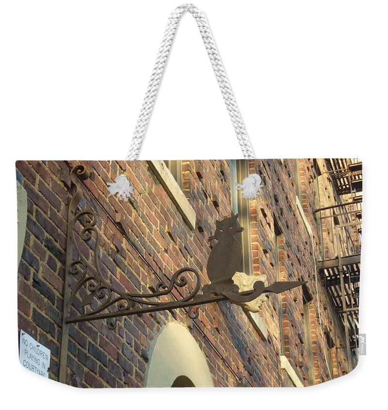 Weekender Tote Bag featuring the photograph Guard Cat by Katerina Naumenko