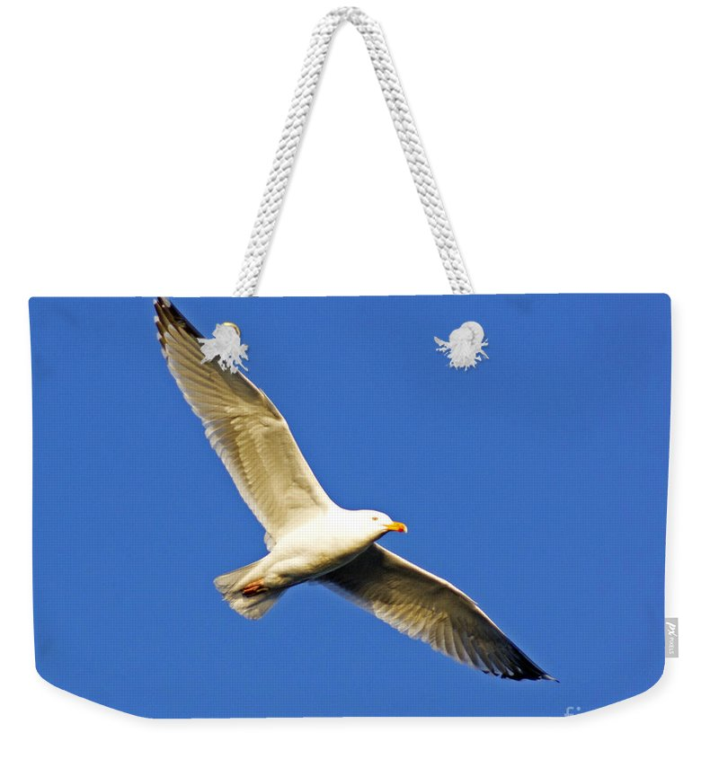 Gull Weekender Tote Bag featuring the photograph Gulleron by Joe Geraci