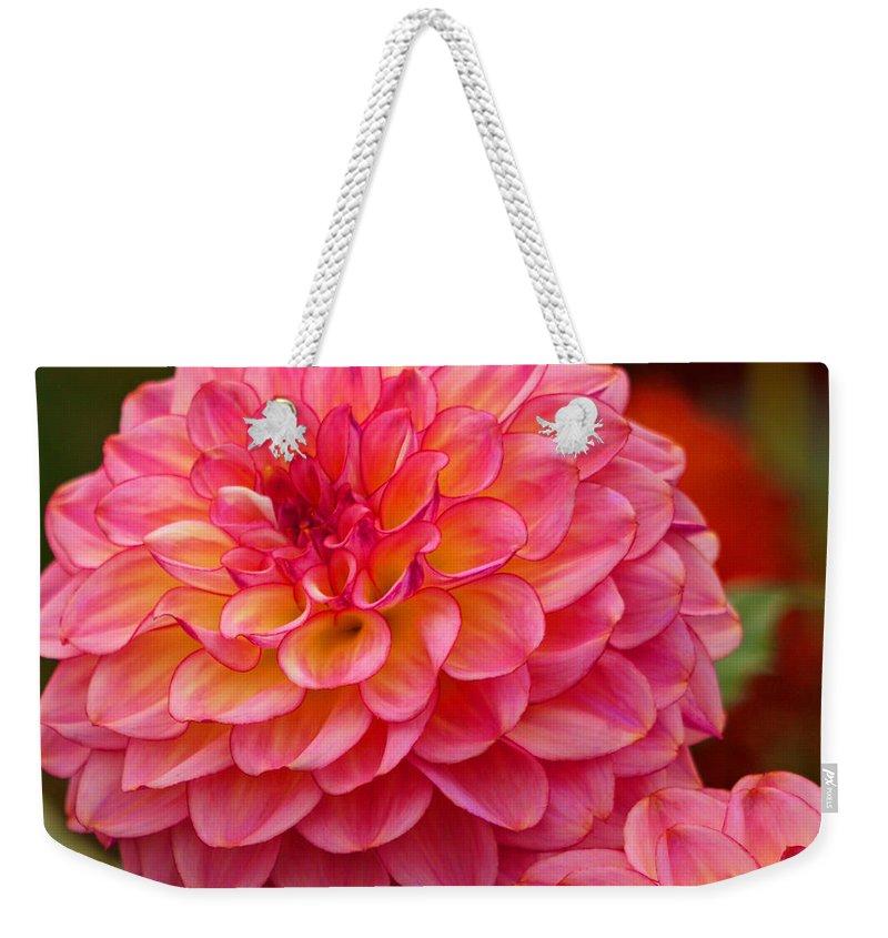 Flower Weekender Tote Bag featuring the photograph Hamari Rose - Dahlia by Jordan Blackstone