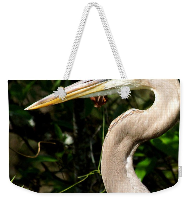 Heron Weekender Tote Bag featuring the photograph Handsome Heron by Larry Allan