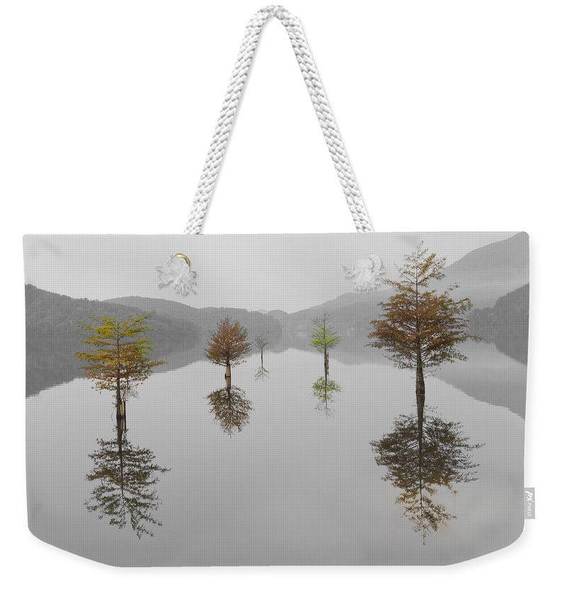 Appalachia Weekender Tote Bag featuring the photograph Hanging Garden by Debra and Dave Vanderlaan