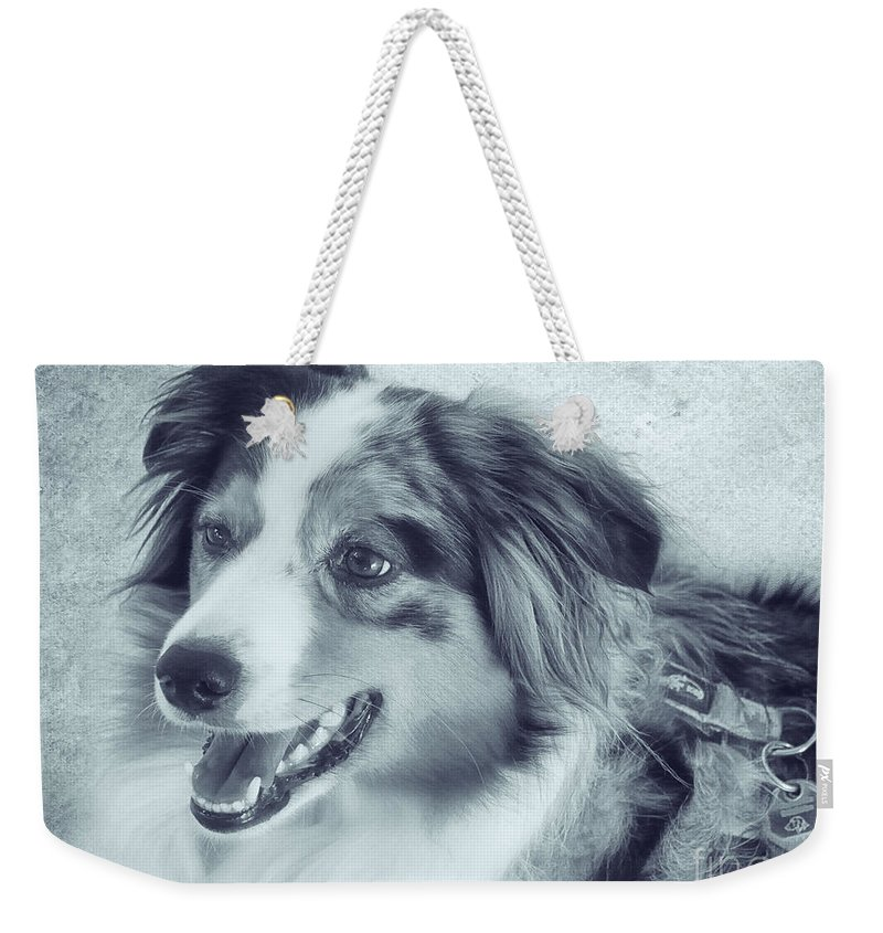 Photo Weekender Tote Bag featuring the photograph Happy Dog by Jutta Maria Pusl