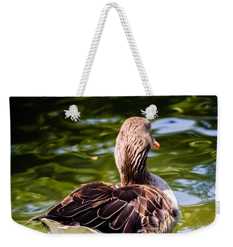 Animals Weekender Tote Bag featuring the photograph Happy Duck by Sotiris Filippou