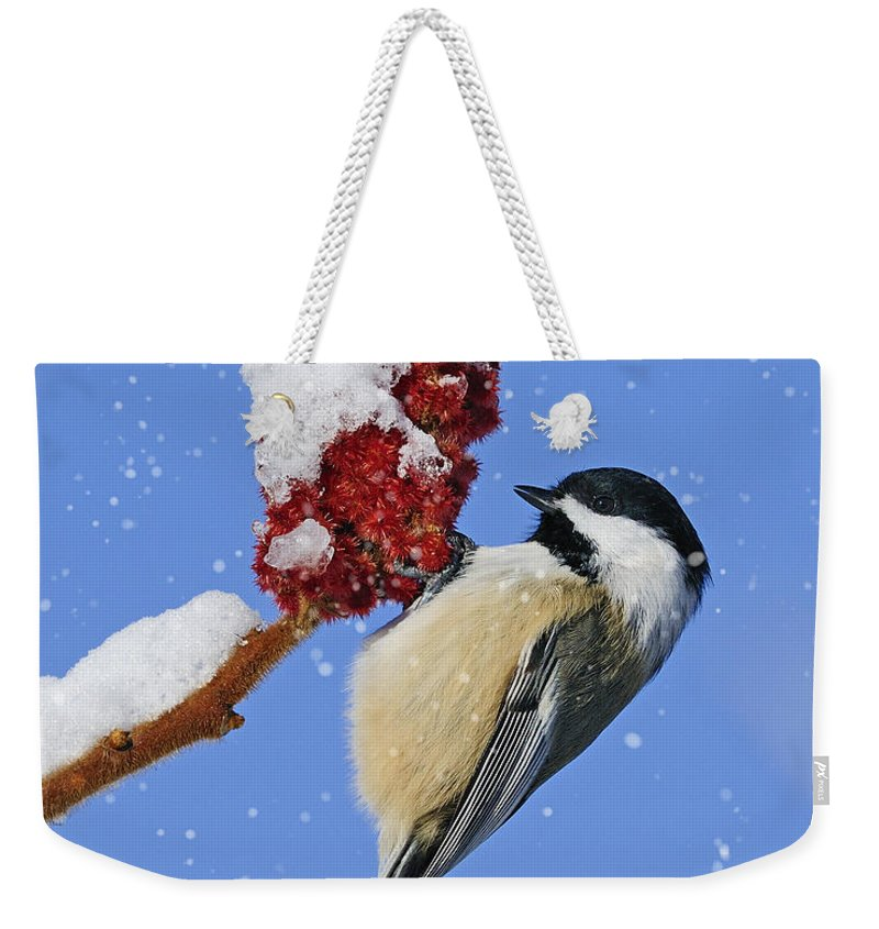 Holiday Weekender Tote Bag featuring the photograph Happy Holidays... by Nina Stavlund