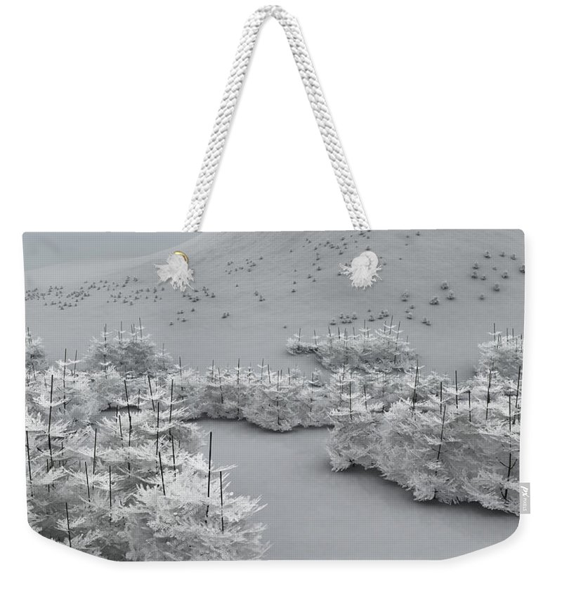 Holiday Greetings Weekender Tote Bag featuring the digital art Happy Holidays by Richard Rizzo