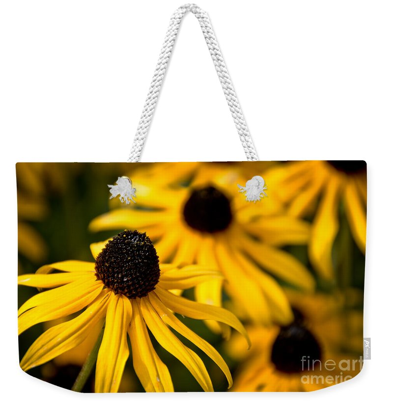 Petal Weekender Tote Bag featuring the photograph Happy Susans by Cheryl Baxter