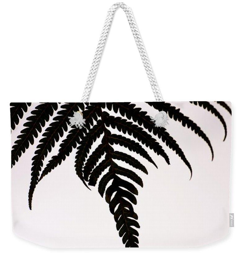 Hawaii Weekender Tote Bag featuring the photograph Hapu'u Frond Leaf Silhouette by Lehua Pekelo-Stearns