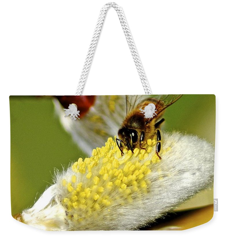 Flower Weekender Tote Bag featuring the photograph Hard At Work by Frozen in Time Fine Art Photography