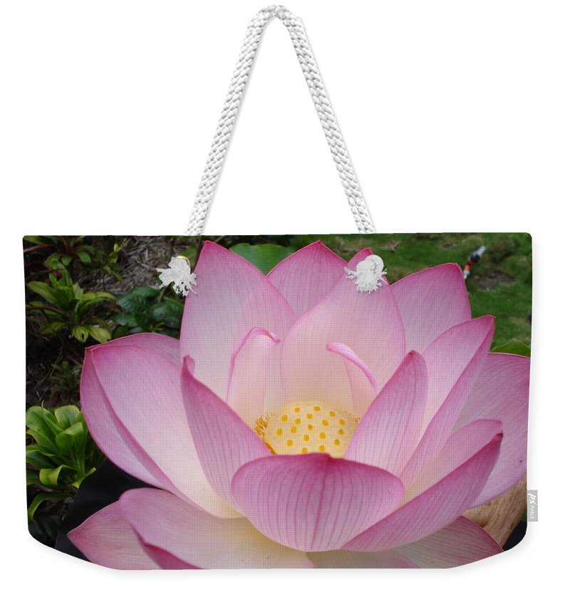 Flower Weekender Tote Bag featuring the photograph Hawaiian Lotus by Jenifer Prince