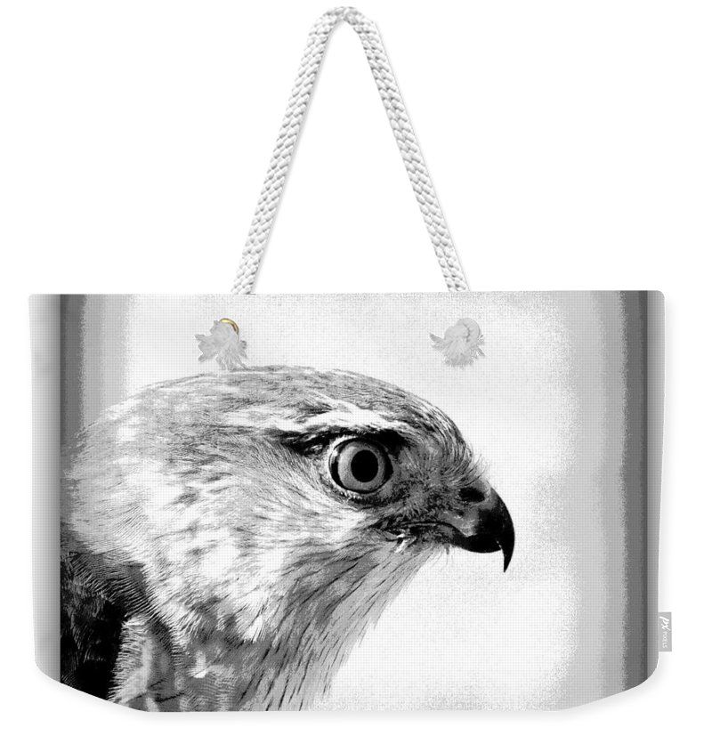 Hawk Weekender Tote Bag featuring the photograph Hawk - Raptor by Travis Truelove