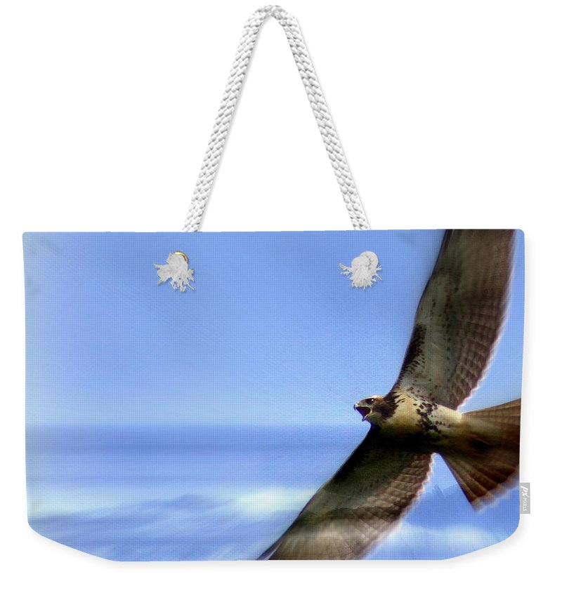 Hawk Weekender Tote Bag featuring the photograph Hawk - Screams Of The Ocean by Travis Truelove