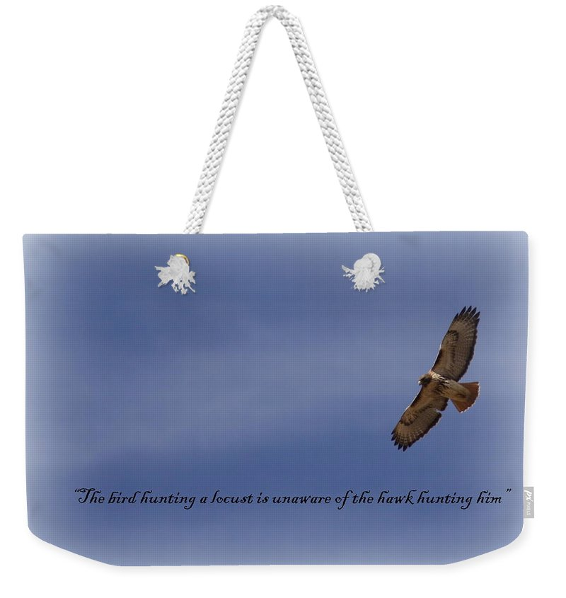 Bird Weekender Tote Bag featuring the photograph Hawk - Soaring by Travis Truelove