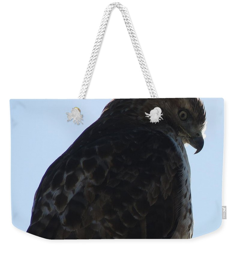 Red Weekender Tote Bag featuring the photograph Hawkish by Mim White