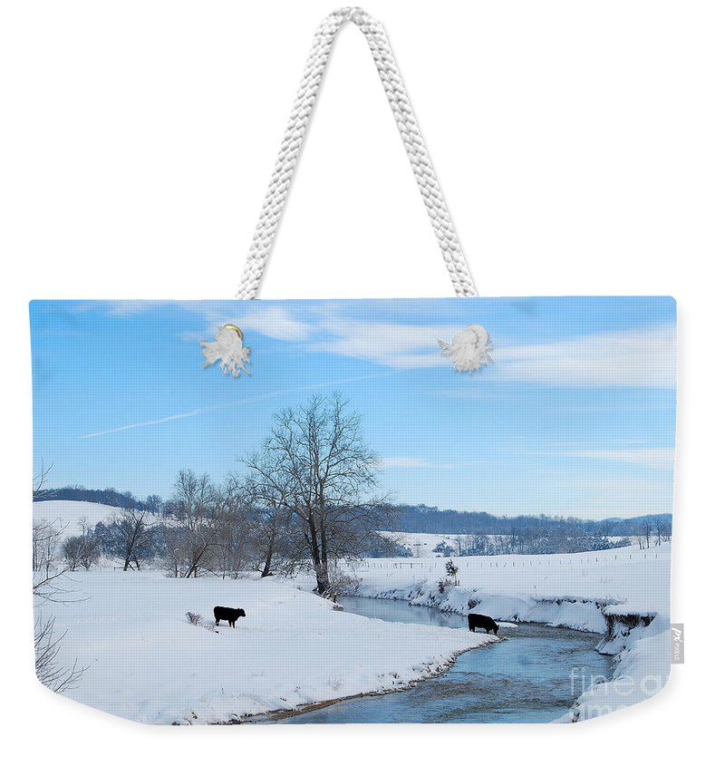 Hays Creek Weekender Tote Bag featuring the photograph Hays Creek Winter by Todd Hostetter