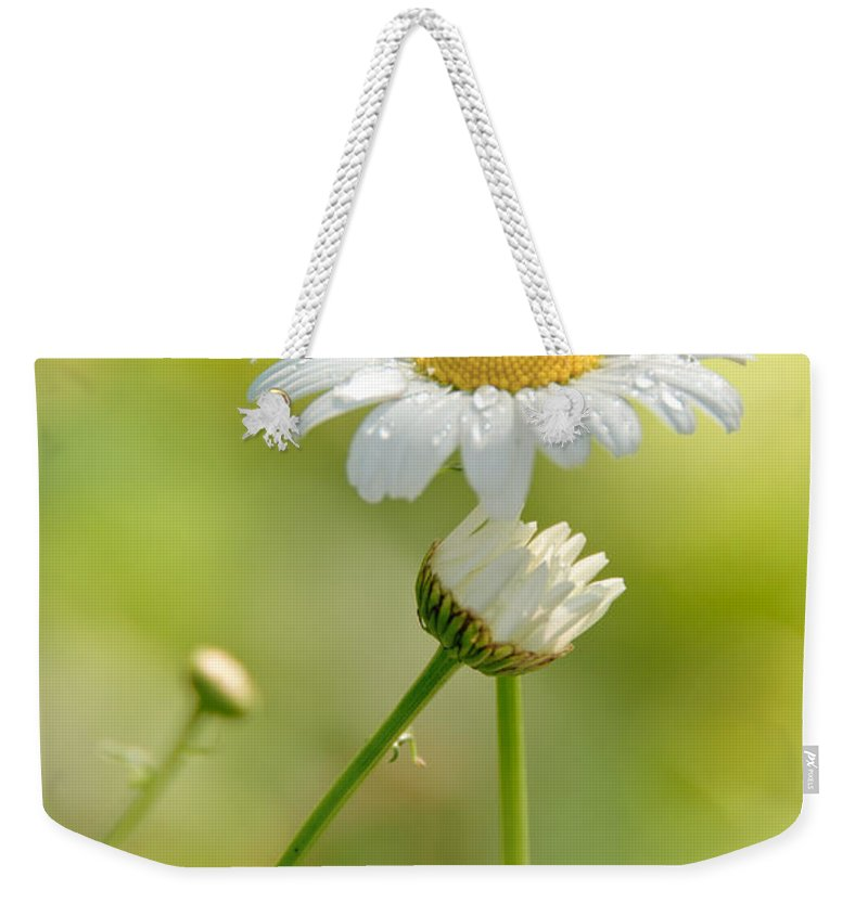 Daisy Weekender Tote Bag featuring the photograph He Loves Me by Cheryl Baxter