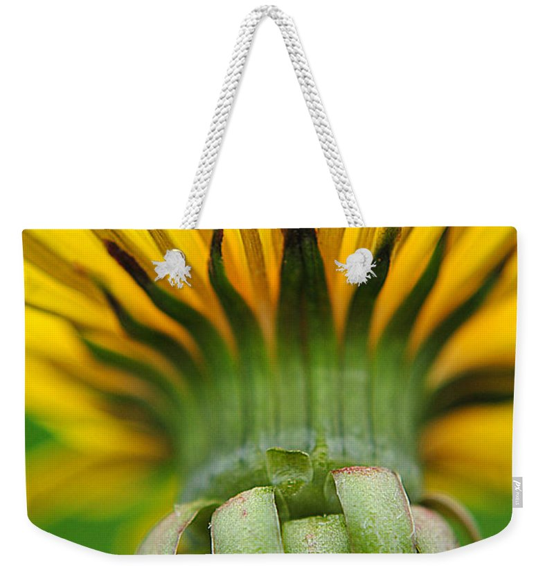 Head Weekender Tote Bag featuring the photograph Head Dress by Frozen in Time Fine Art Photography