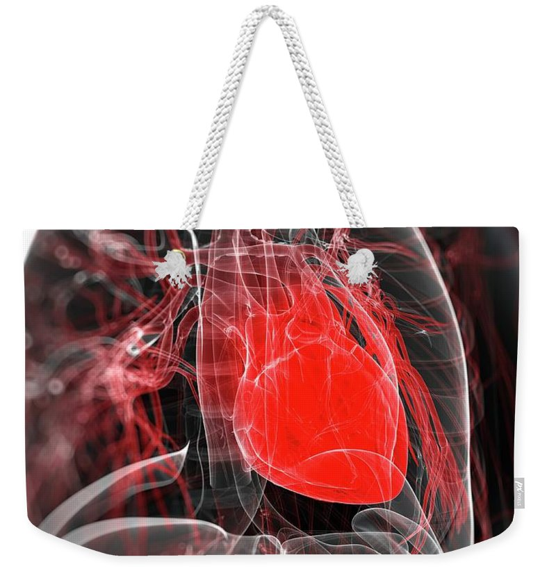Physiology Weekender Tote Bag featuring the digital art Heart Anatomy, Artwork by Sciepro