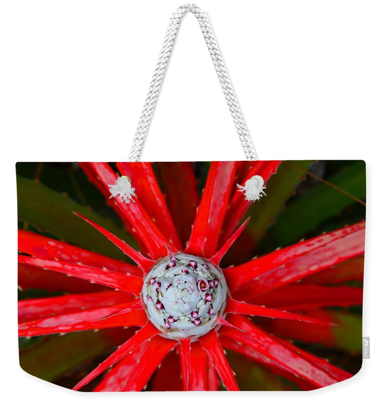 Plant Weekender Tote Bag featuring the photograph Heart Of Fire by David Lee Thompson