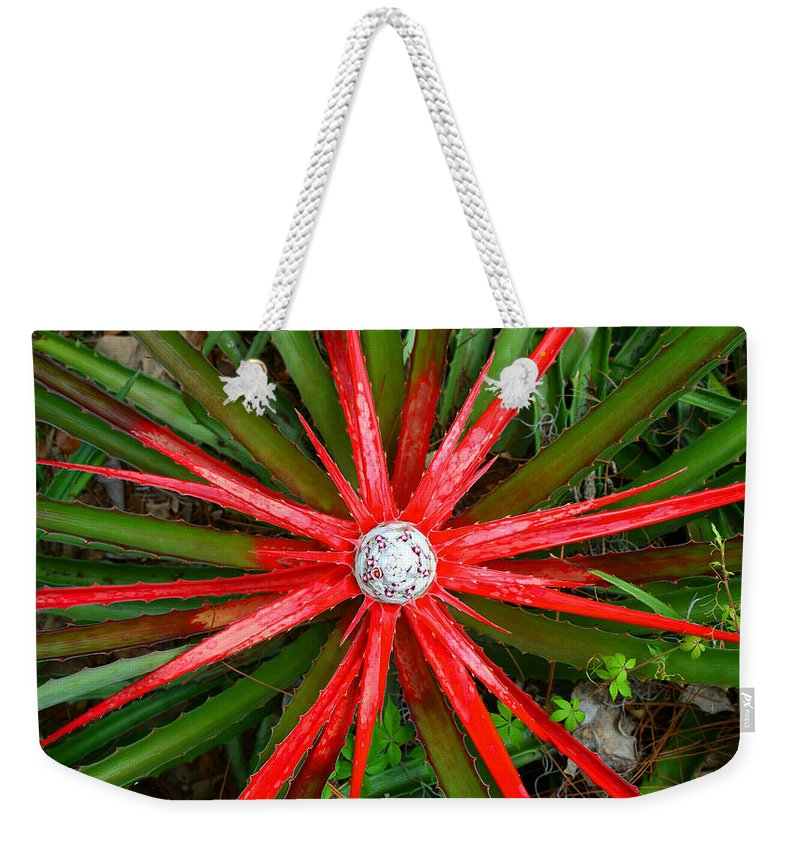 Heart Of Fire Weekender Tote Bag featuring the photograph Heart Of Fire Panoramic by David Lee Thompson