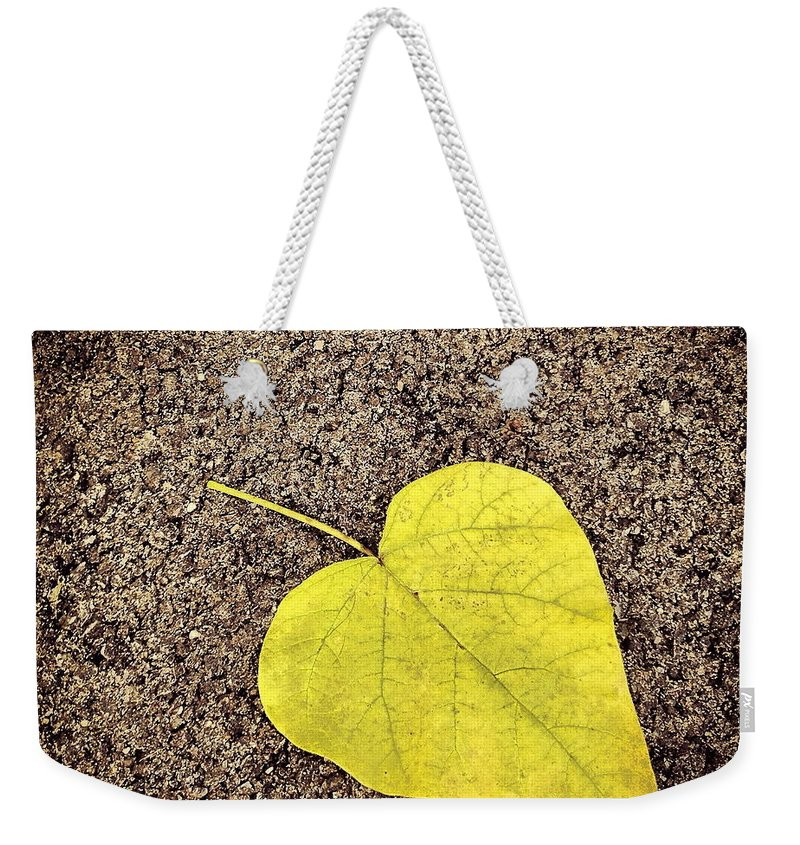 Leaf Weekender Tote Bag featuring the photograph Heart Shaped Leaf On Pavement by Angela Rath