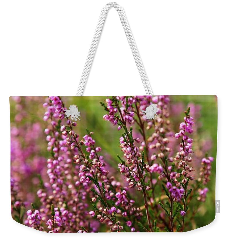 Heather Weekender Tote Bag featuring the photograph Heather by Carol Groenen