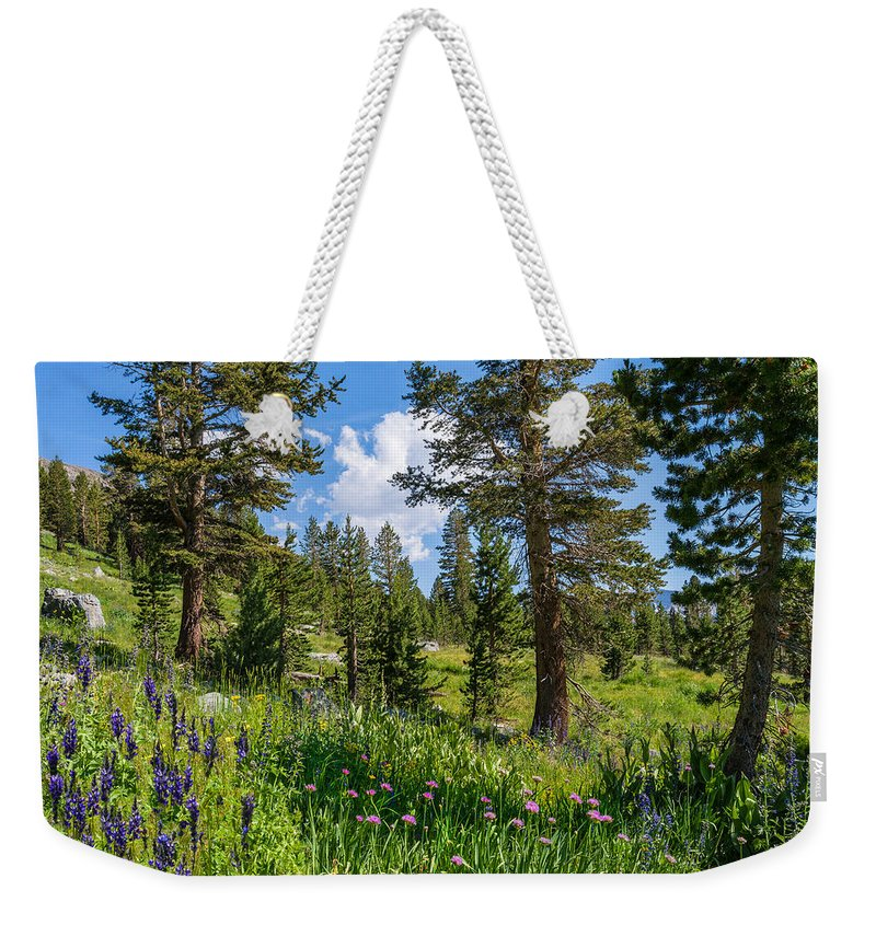 Tioga Pass Weekender Tote Bag featuring the photograph Heaven In The High Country by Lynn Bauer