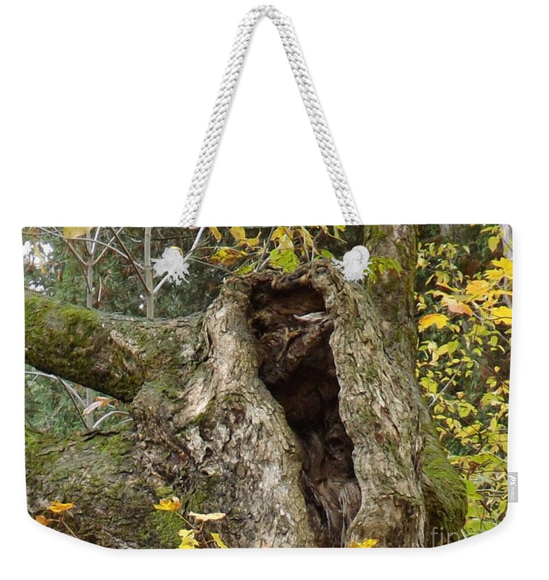 Tree Trunk Weekender Tote Bag featuring the photograph Hello Is There Anybody Out There? by Brenda Brown