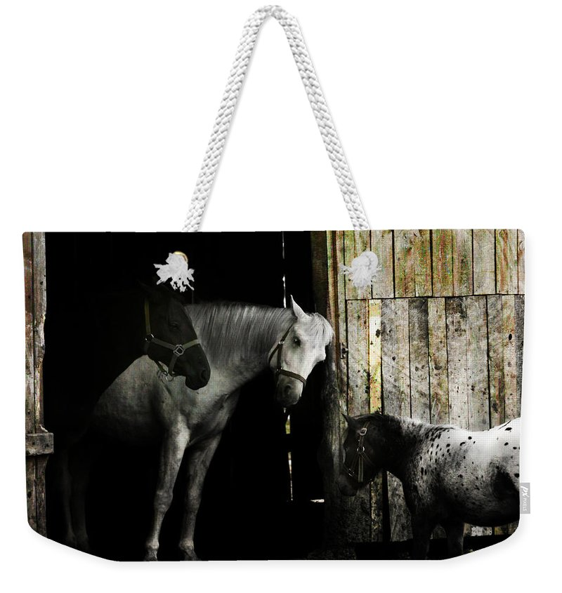 Guest Weekender Tote Bag featuring the photograph Hello Neighbour by Angel Ciesniarska