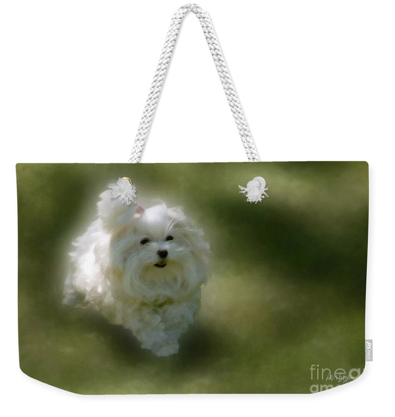 Dogs Weekender Tote Bag featuring the photograph Here She Comes by Lois Bryan