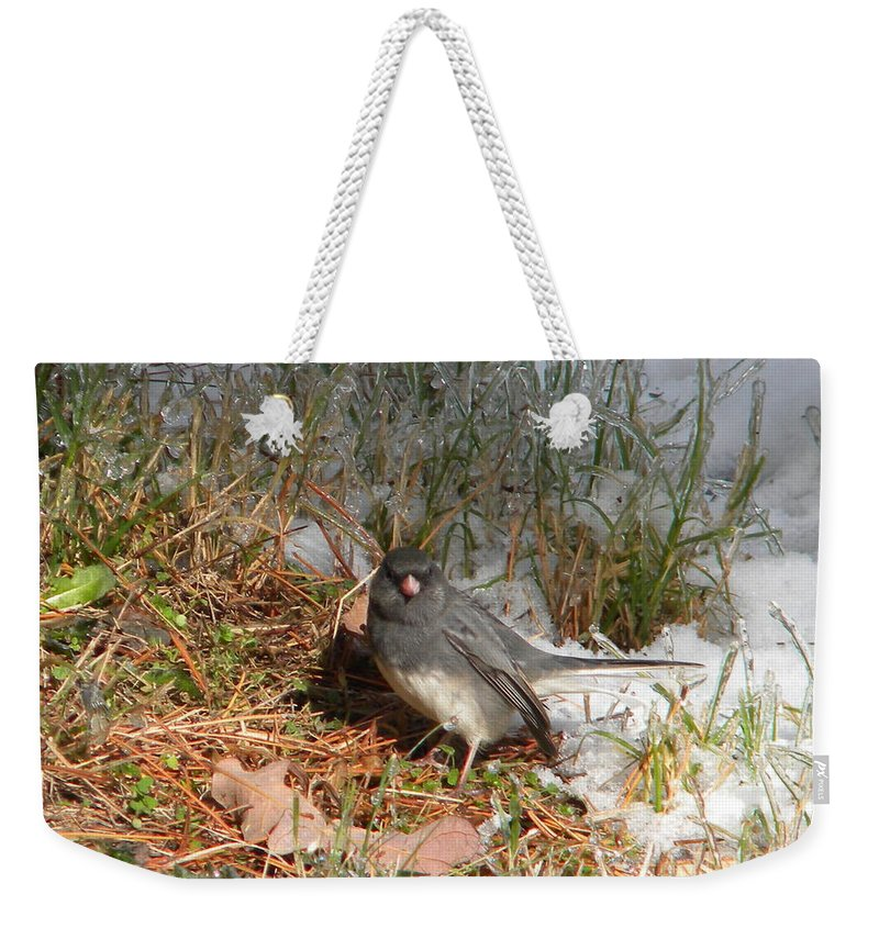 Thrush Weekender Tote Bag featuring the photograph Dark-eyed Junco by Nathanael Smith