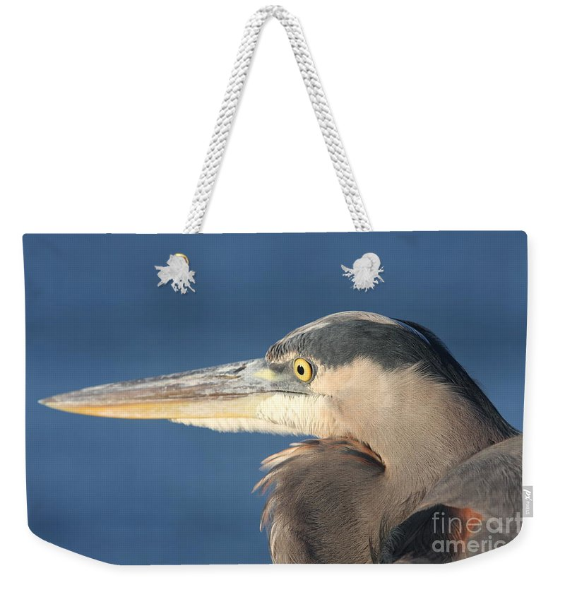 Heron Weekender Tote Bag featuring the photograph Heron Close-up by Christiane Schulze Art And Photography
