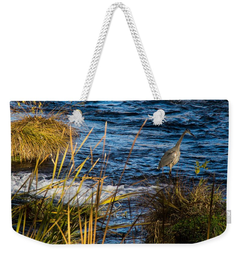 Heron Weekender Tote Bag featuring the photograph Heron Fishing by Mick Anderson
