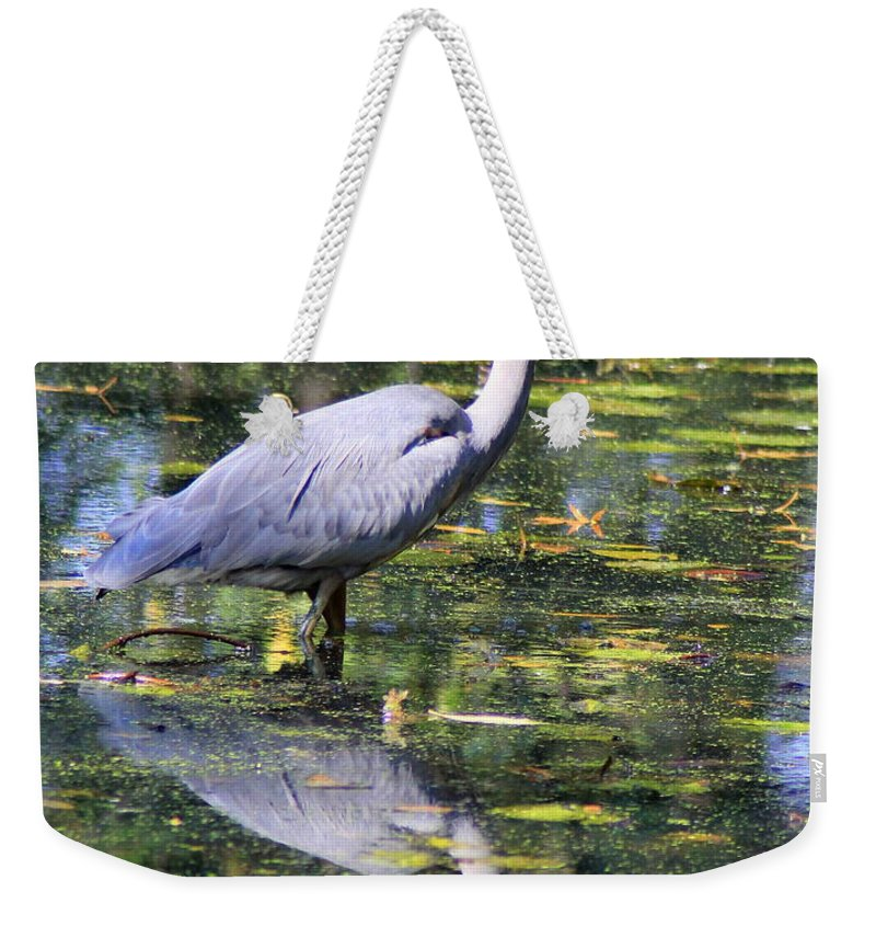 Blue Weekender Tote Bag featuring the photograph Heron Hunter by Kenny Glotfelty