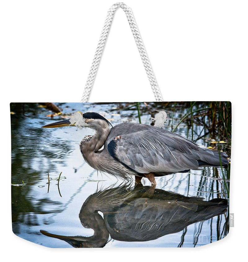 Ornithology Weekender Tote Bag featuring the photograph Heron Reflecting by Cheryl Baxter