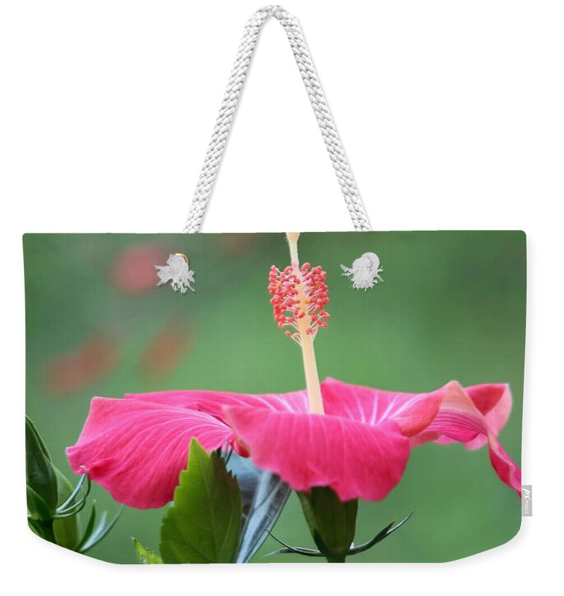 Macro Weekender Tote Bag featuring the photograph Hibiscus Ballerina by Sabrina L Ryan