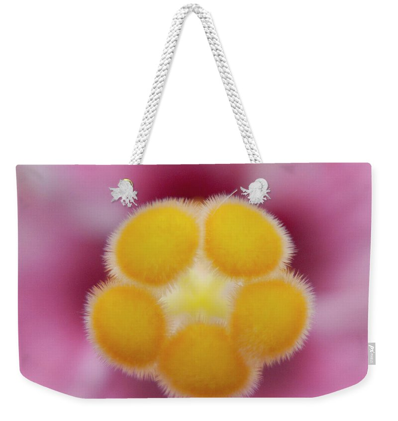 Heiko Weekender Tote Bag featuring the photograph Hibiscus by Heiko Koehrer-Wagner