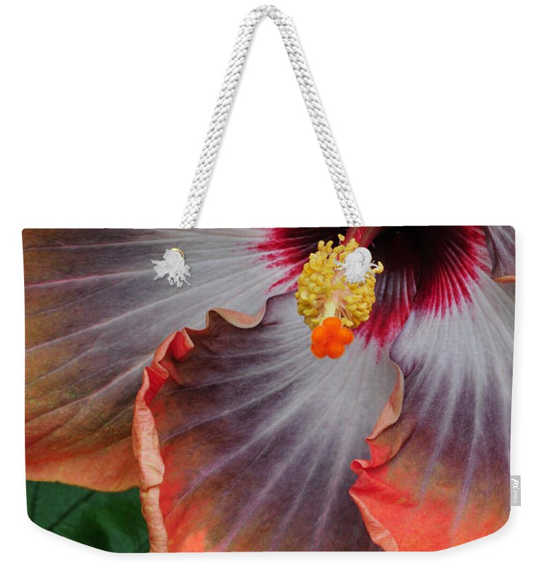 Hibiscus Weekender Tote Bag featuring the photograph Hibiscus Key Largo by Dave Mills