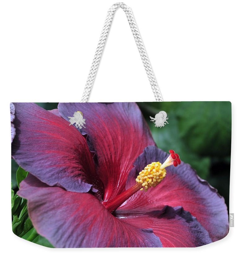 Hibiscus Weekender Tote Bag featuring the photograph Hibiscus Night Fire by Terri Winkler