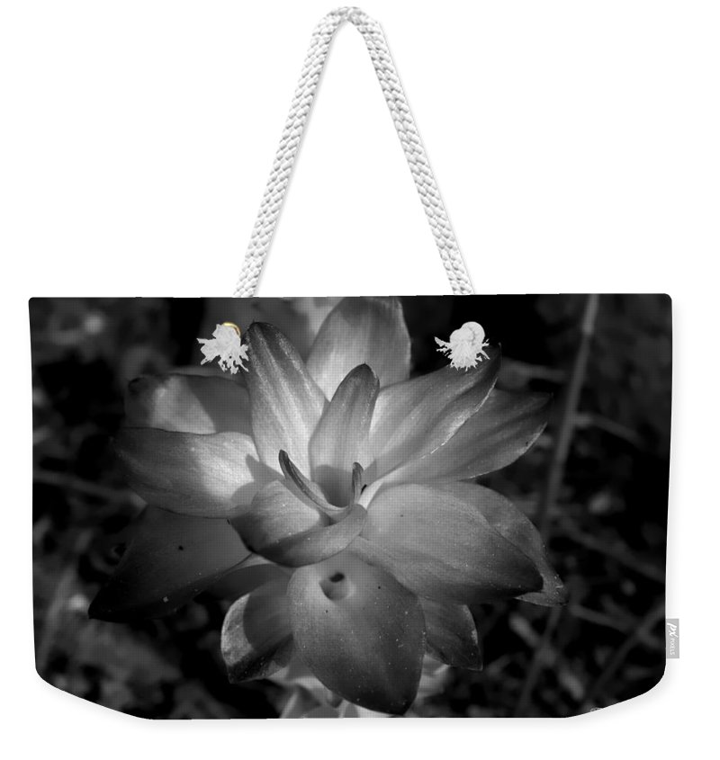 Lillies Weekender Tote Bag featuring the photograph Hidden Lilly by Debra Forand