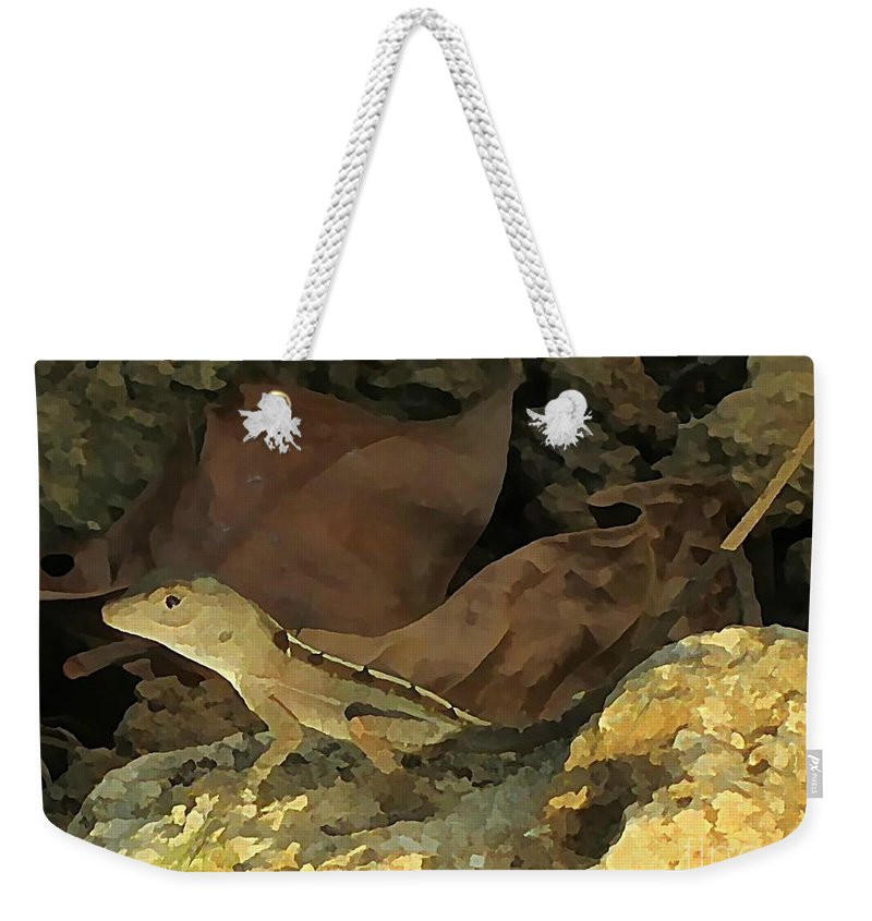 Lizar Art Weekender Tote Bag featuring the photograph Hiding Out by John Malone