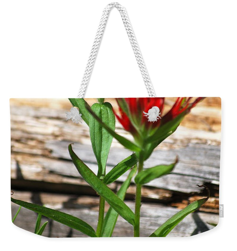 Indian Paintbrush Weekender Tote Bag featuring the photograph High Country Wildflowers by Sharon Elliott