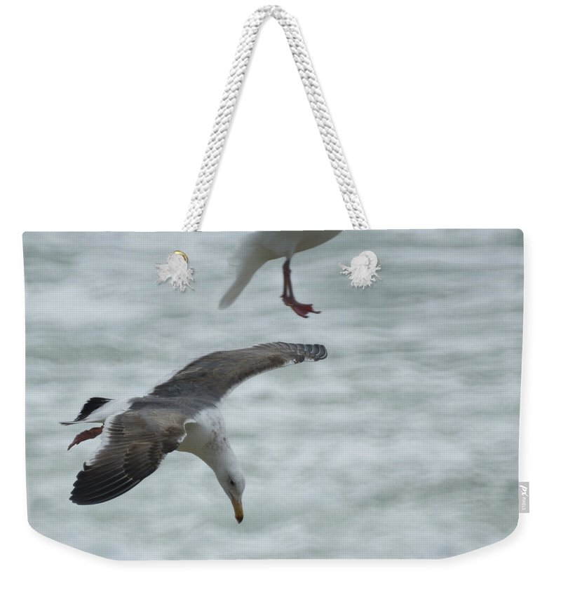 Seagull Weekender Tote Bag featuring the photograph High Dive by Ernie Echols