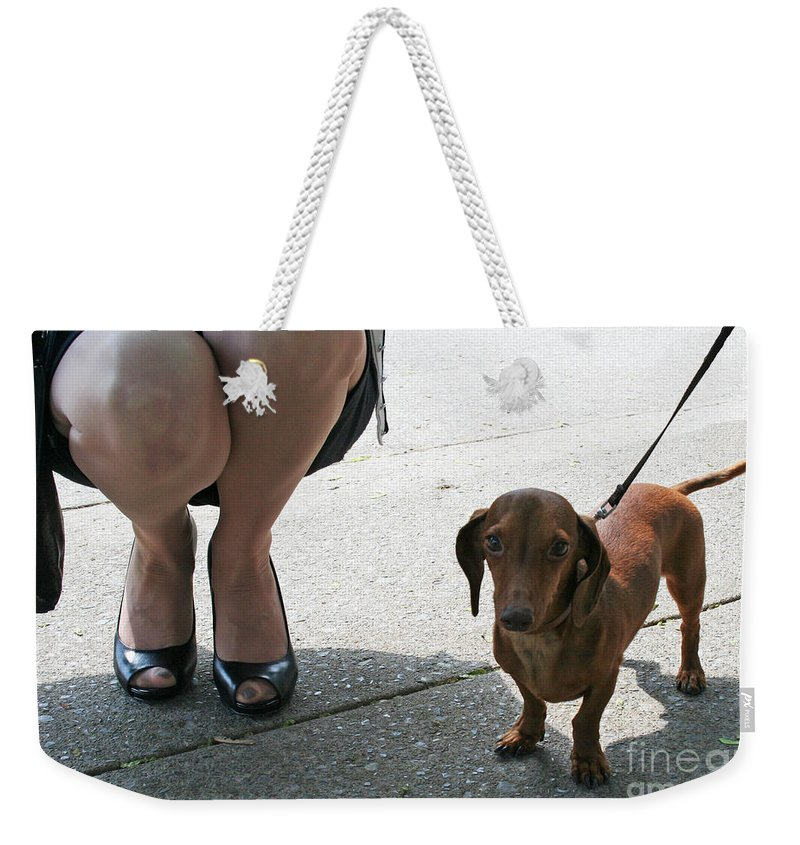 Dog Weekender Tote Bag featuring the photograph High Heels And A Dachsund by Barbara McMahon
