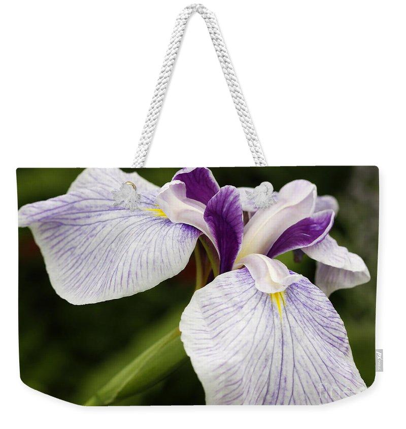 Iris Weekender Tote Bag featuring the photograph Hint Of Purple by Deborah Benoit