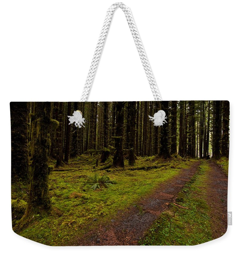 Hoh Rainforest Weekender Tote Bag featuring the photograph Hoh Rainforest Road by Mike Reid