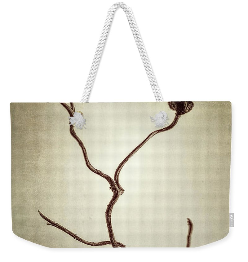 Vine Weekender Tote Bag featuring the photograph Holdfast Rootlet by Scott Norris