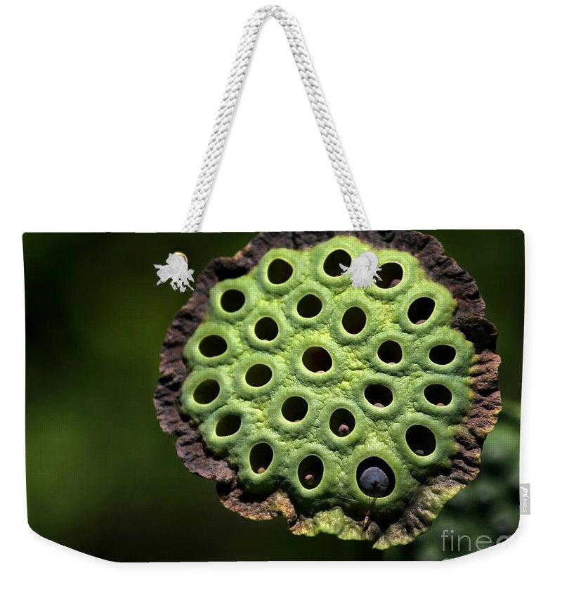 Lotus Weekender Tote Bag featuring the photograph Holey Moley by Sabrina L Ryan